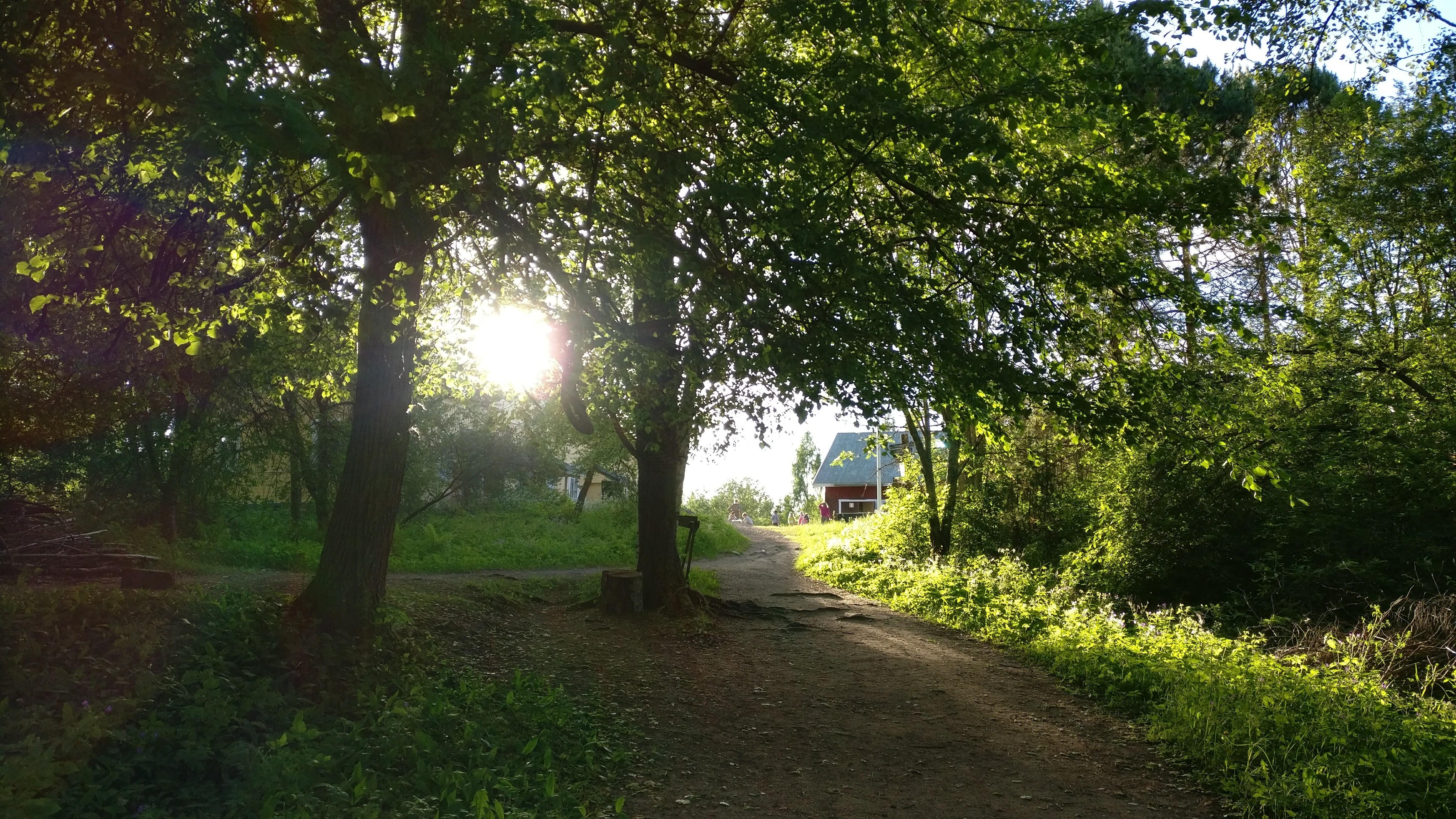 Näkymä telttakylästä päätalolle, aurinko siivilöityy puuston läpi